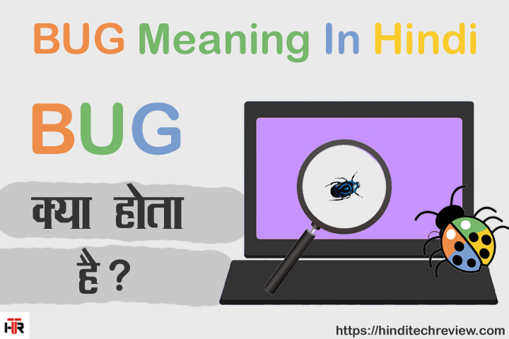 BUG Meaning In Hindi